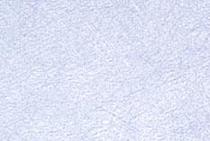 fibreglass2.jpg